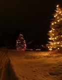 Snowy Night and Lights. This image of the decorated trees and the snowy yard was taken in western MT Royalty Free Stock Photo
