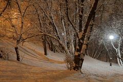 Snowy night Stock Photo