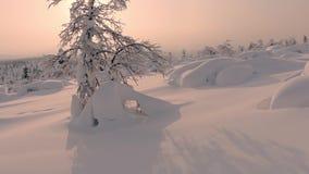 Snowy-Nordlandschaft bei Sonnenuntergang stock video