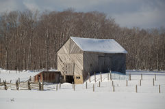 Snowy old barn with diagonal boards and barnyard. Snowy old barn on a sunny day. Barnboards run diagonally and are grey, old and weathered. Shows some fence and royalty free stock photo
