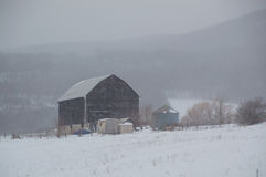 Snowy old black barn in snowstorm with hills Royalty Free Stock Image