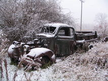 Snowy Old Truck. A rusty old truck covered in snow, and sitting in the weeds Royalty Free Stock Images