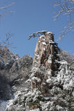 Snowy Outcrop royalty free stock photography