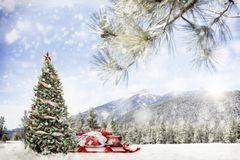 Free Snowy Outdoor Christmas Tree Scene In Mountains Royalty Free Stock Image - 133058026