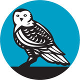 Snowy Owl Circle Retro Royalty Free Stock Photography