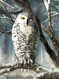 Snowy Owl vector illustration
