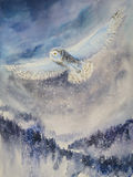 Snowy owl. Winter. Snowy owl flying over mountains. .Picture created with watercolors royalty free stock photography