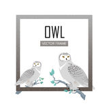 Snowy Owls Flat Design Vector Illustration Royalty Free Stock Photography