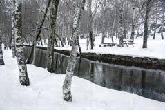 Snowy Park Royalty Free Stock Photo