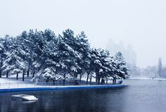 Snowy park Royalty Free Stock Photo
