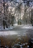 Snowy park. Frozen ditch in a snowy park Royalty Free Stock Photos