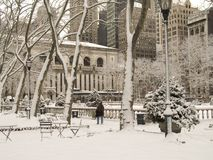 Snowy Park. This is a shot of Bryant Park In Manhattan during a snow storm. The New York Public Library can be seen in the background royalty free stock photography