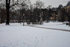 Snowy-Park lizenzfreie stockfotos
