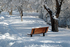 Snowy park bench Stock Images