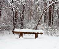Snowy park Royalty Free Stock Image