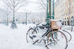 Snowy Bicycles in Paris France. A snowy park with bicycles covered in snow in Paris after a major snowstorm, Place Dauphine Royalty Free Stock Photography
