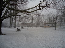 Snowy Park Stock Photography