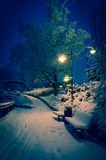 Snowy park at night Stock Photography