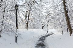 Prospect Park Snowy Path Curves. A snowy park path the morning after an Historic Spring snowstorm in Prospect Park, Brooklyn Royalty Free Stock Images