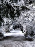 Snowy park trail Royalty Free Stock Photography
