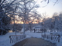 Snowy park at twilight Royalty Free Stock Photography