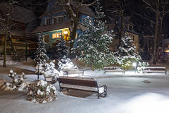 Snowy park in Zakopane at night Royalty Free Stock Image