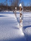 Snowy pasture fence Royalty Free Stock Photos