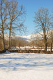 Snowy pasture. S in the valley. Cantabria. Spain Stock Images