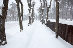 Snowy path in an alley Royalty Free Stock Image