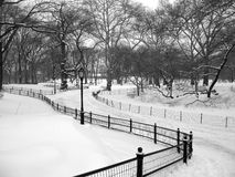 Snowy path in Central Park, New York City. A snowy path with Victorian lamp after a blizzard in Central Park, New York City Royalty Free Stock Photo