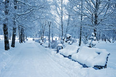 Snowy path in city park Royalty Free Stock Photography