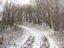 Snowy path Stock Photo