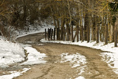 Snowy path. Snowy logging road in winter Royalty Free Stock Photography