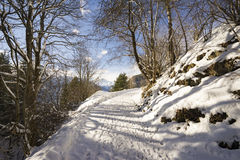 Snowy path in a mountain forest. With footprints and sunny sky Stock Photography
