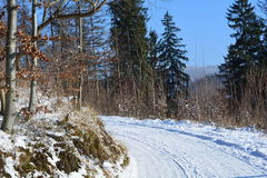 Snowy path on the mountains. Clear winter morning on the mountains - snowy path Stock Images