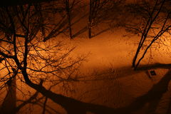 SNOWY PATH AT NIGHT. Path covered in snow and street lamp is making shadow from everything Royalty Free Stock Photo