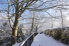 Snowy Path in a Park Royalty Free Stock Photography