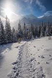 Snowy path to the winter shelter in the mountains Royalty Free Stock Photography