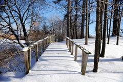 Snowy Path Untrod Royalty Free Stock Image