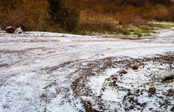Snowy Path Winter Landscape Royalty Free Stock Photography
