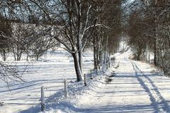 Snowy path in winter Stock Image