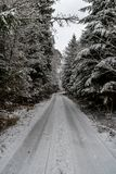 A snowy path into the wood near Studnice. A snowy path into the wood at Studnice Stock Photo