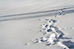 Snowy paths Stock Photo