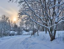 Snowy pathway in small village with frosty trees stock photos