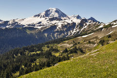 Snowy peak and background meadows royalty free stock image