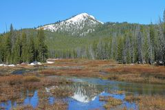 Snowy Peak Reflected in Water. Snow capped mountain  above a forested  landscape reflected in water Royalty Free Stock Photography