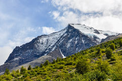 Snowy peak, Torres del Paine National Park, Chile. A peak covered with snow in summer in the Torres del Paine National Park, Patagonia, Chile royalty free stock photography