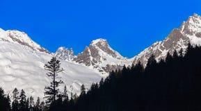 Snowy peaks Stock Images
