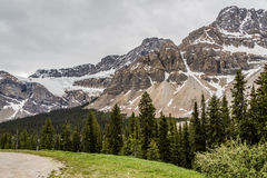 Snowy Peaks of the Canadian Rocky Mountains Royalty Free Stock Images