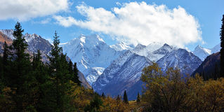 Snowy peaks of Kyrgyzstan Royalty Free Stock Photography